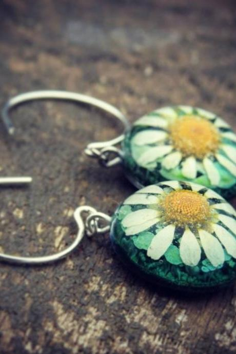 Green Resin Droplet Hoop Earrings With Real Chamomile Flowers
