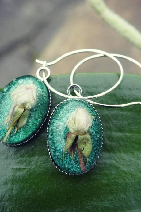 Green Petri Dish Resin Hoop Earrings With Real Rosebud Flower